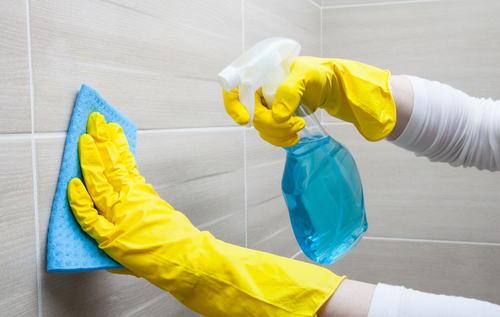 What Can Kill Bacteria at Home?